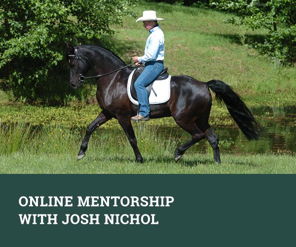 Online Mentorship with Josh Nichol